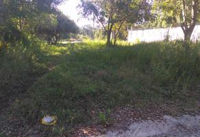 Foto de terreno habitacional en venta en tlaxcala , lindavista, pueblo viejo, veracruz de ignacio de la llave, 17712995 No. 01