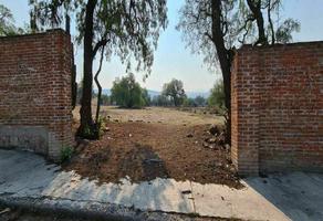 Foto de terreno habitacional en venta en tlaxcantla , la concepción jolalpan, tepetlaoxtoc, méxico, 0 No. 01