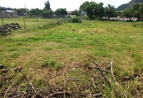 Foto de terreno comercial en venta en tlayacapan 24, tlayacapan, tlayacapan, morelos, 6253933 No. 01