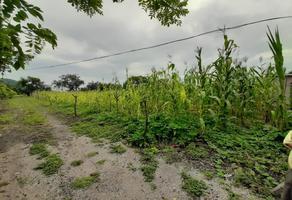 Foto de terreno habitacional en venta en tlayacapan 87, tlayacapan, tlayacapan, morelos, 18758852 No. 01