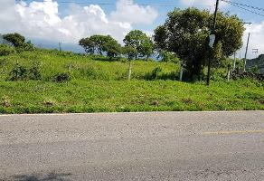 Foto de terreno habitacional en venta en  , tlayacapan, tlayacapan, morelos, 11750868 No. 01
