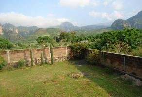 Foto de terreno habitacional en venta en  , tlayacapan, tlayacapan, morelos, 12085977 No. 01