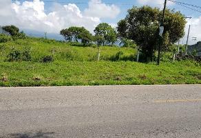 Foto de terreno habitacional en venta en  , tlayacapan, tlayacapan, morelos, 13827749 No. 01