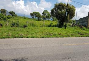 Foto de terreno habitacional en venta en  , tlayacapan, tlayacapan, morelos, 16357188 No. 01