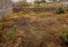 Foto de terreno habitacional en venta en  , tlayacapan, tlayacapan, morelos, 7230903 No. 01