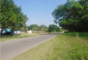 Foto de terreno habitacional en venta en  , tlayacapan, tlayacapan, morelos, 9357960 No. 01