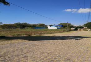 Foto de terreno habitacional en venta en tlayacapan , viyautepec 2a sección, yautepec, morelos, 14945524 No. 01