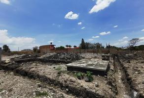 Foto de terreno habitacional en venta en  , tlayecac, ayala, morelos, 0 No. 01