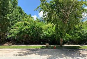 Foto de terreno habitacional en venta en toh , yucatan, mérida, yucatán, 0 No. 01