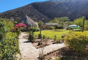 Foto de terreno habitacional en venta en  , tolimán, tolimán, querétaro, 17950282 No. 01