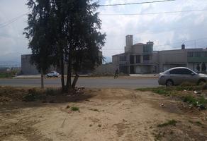 Foto de terreno habitacional en venta en toluca-morelia, 51355 san francisco tlalcilalcalpan, méx. , san luis mextepec, zinacantepec, méxico, 0 No. 01