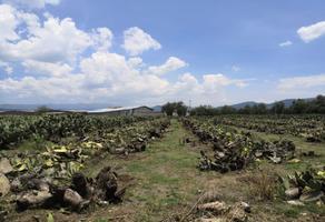 Foto de terreno habitacional en venta en tomatlán sn. , san martín de las pirámides, san martín de las pirámides, méxico, 0 No. 01