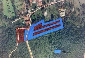 Foto de terreno habitacional en venta en toribio rodriguez , aserradero, santiago, nuevo león, 15745198 No. 01