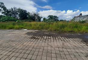 Foto de terreno habitacional en venta en  , torreón nuevo, morelia, michoacán de ocampo, 21759260 No. 01