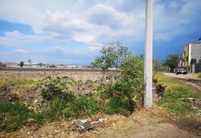 Foto de terreno habitacional en venta en torreon nuevo , torreón nuevo, morelia, michoacán de ocampo, 15214300 No. 01