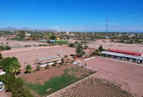 Foto de terreno habitacional en venta en  , torreón residencial, torreón, coahuila de zaragoza, 0 No. 01
