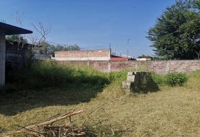Foto de terreno habitacional en venta en torres burgos, cuautla 1320, pablo torres burgos, cuautla, morelos, 17203231 No. 01