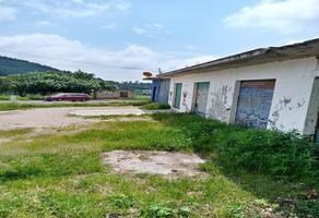 Foto de terreno habitacional en venta en totolapan 1, san marcos, totolapan, morelos, 0 No. 01