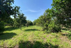 Foto de terreno habitacional en venta en  , totolapan, totolapan, morelos, 0 No. 01