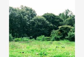 Foto de terreno habitacional en venta en  , totolapan, totolapan, morelos, 21428831 No. 01