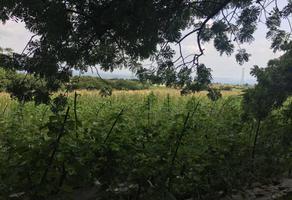 Foto de terreno habitacional en venta en  , totolapan, totolapan, morelos, 6946077 No. 01