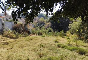 Foto de terreno habitacional en venta en tres cruces , ahuatepec, cuernavaca, morelos, 0 No. 01