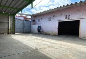 Foto de nave industrial en renta en  , trinidad de las huertas, oaxaca de juárez, oaxaca, 0 No. 01