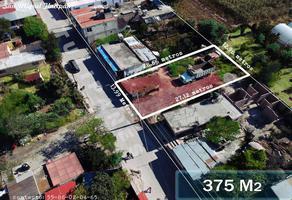 Foto de terreno habitacional en venta en tulipanes 0, san miguel tlaixpan, texcoco, méxico, 0 No. 01