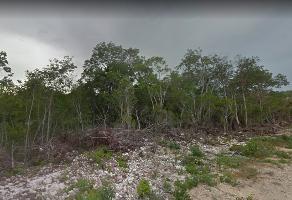 Foto de terreno industrial en venta en tulum 566, tulum centro, tulum, quintana roo, 7273859 No. 01