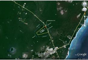 Foto de terreno comercial en venta en  , tulum centro, tulum, quintana roo, 13975639 No. 01