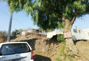 Foto de terreno habitacional en venta en tulyehualco , santiago tulyehualco, xochimilco, df / cdmx, 0 No. 01