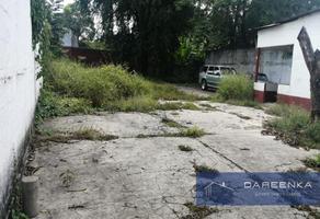 Foto de terreno habitacional en venta en  , tuxtepec centro, san juan bautista tuxtepec, oaxaca, 0 No. 01