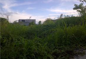 Foto de terreno habitacional en venta en  , tuxtepec, san juan bautista tuxtepec, oaxaca, 11634695 No. 01