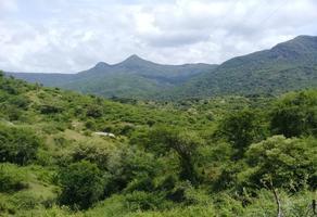 Foto de terreno habitacional en venta en  , tuzantla, tuzantla, michoacán de ocampo, 12726147 No. 01