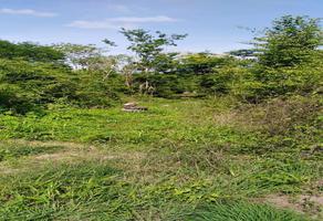 Foto de terreno habitacional en venta en  , ucu, ucú, yucatán, 0 No. 01