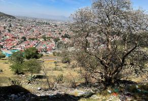 Foto de terreno habitacional en venta en urbano fonseca 00, zopilocalco norte, toluca, méxico, 0 No. 01