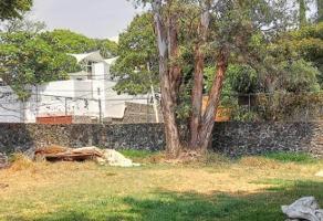 Foto de terreno habitacional en venta en usumacinta , vista hermosa, cuernavaca, morelos, 0 No. 01