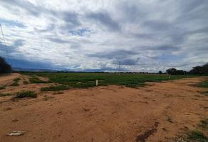 Foto de terreno habitacional en venta en valladolid , valladolid, jesús maría, aguascalientes, 0 No. 01