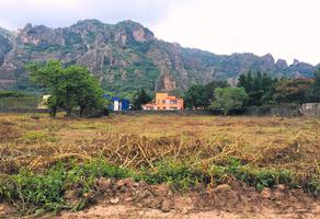 Foto de terreno habitacional en venta en valle de atongo 1, valle de cuernavaca, tepoztlán, morelos, 19605386 No. 01