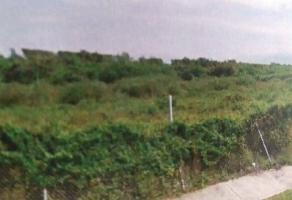 Foto de terreno comercial en venta en  , valle de banderas, bahía de banderas, nayarit, 4555958 No. 01