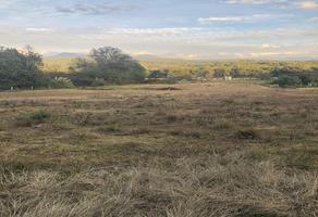 Foto de terreno comercial en venta en valle de bravo real camino a acatitlan , san mateo acatitlan , valle de bravo, valle de bravo, méxico, 8275251 No. 01