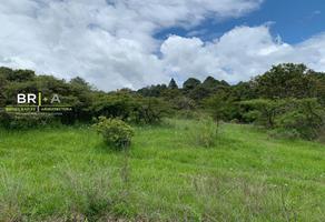 Foto de terreno comercial en venta en  , valle de bravo, valle de bravo, méxico, 17826447 No. 01