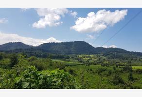 Foto de terreno comercial en venta en  , valle de bravo, valle de bravo, méxico, 19386415 No. 01