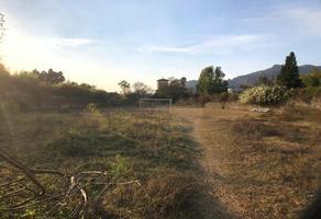 Foto de terreno habitacional en venta en  , valle de cuernavaca, tepoztlán, morelos, 0 No. 01