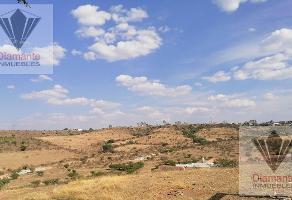 Foto de terreno habitacional en venta en  , valle de los cactus, aguascalientes, aguascalientes, 0 No. 01