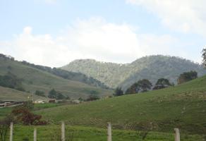 Foto de terreno habitacional en venta en  , valle de los molinos, zapopan, jalisco, 14262190 No. 01