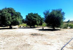Foto de terreno habitacional en venta en valle de tanama , tecate, tecate, baja california, 9175686 No. 01