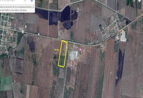 Foto de terreno habitacional en venta en  , valle del mante, el mante, tamaulipas, 0 No. 01