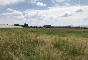 Foto de rancho en venta en valle del marqués , parque industrial el marqués, el marqués, querétaro, 17075159 No. 02