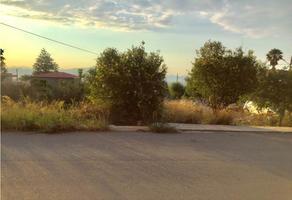 Foto de terreno habitacional en venta en  , valle dorado, saltillo, coahuila de zaragoza, 19582133 No. 01
